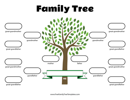 graphic relating to Tree Pattern Printable named No cost Household Tree Templates - for A+ Assignments
